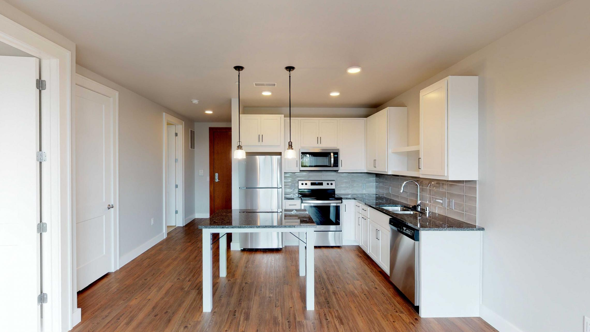 1722-Monroe-Apartment-One Bedroom-Modern-Luxury-Kitchen-Design.jpg