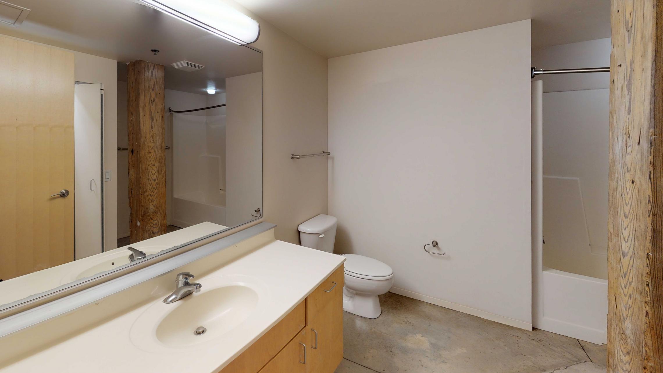 Tobacco-Lofts-Apartment-E102-Bathroom-Historic-Design-Madison-Downtown