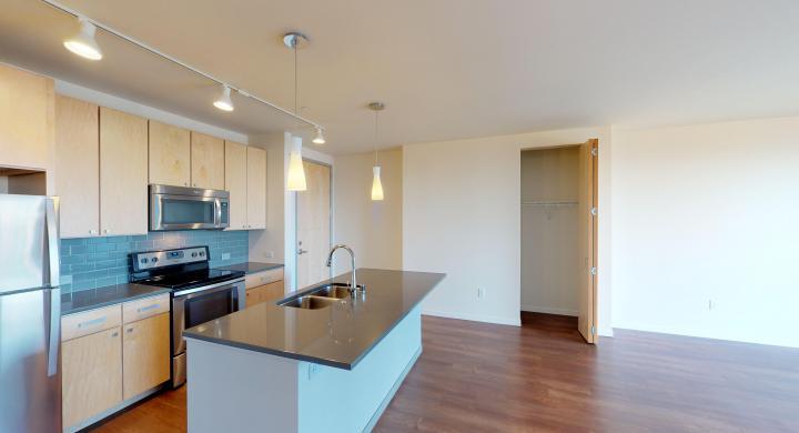 Nine-Line-Apartment-kitchen-appliances-modern-lake-view-downtown-Capitol-Madison-lifestyle-dinning