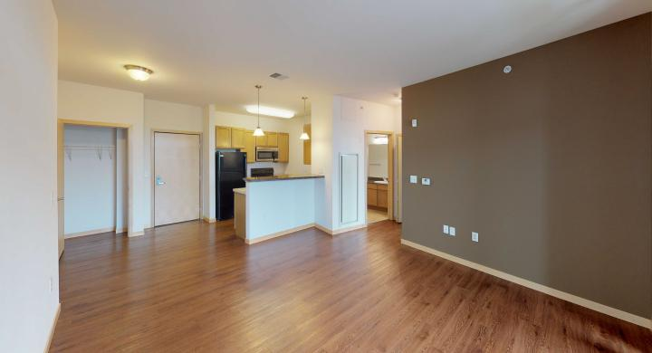 The-Depot-Apartment-1-513-One-Bedroom-Den-Downtown-Madison.jpg