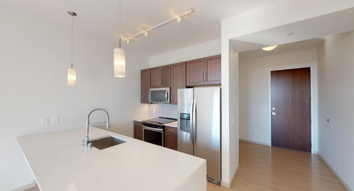 The-Pressman-Apartment-611-Modern-Lakeview-Downtown-Capitol-Upscale-Madison-City-Luxury