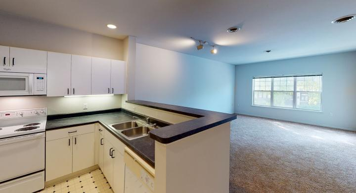 Wilson-Bay-208-One bedroom-kitchen-downtown-balcony-downtown-Madison