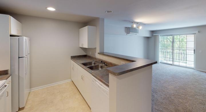 Wilson-Bay-Apartment-309-Studio-Downtown-Madison-Kitchen-Living-Balcony-Patio.jpg
